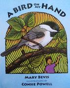 A Bird on My Hand (hardcover)