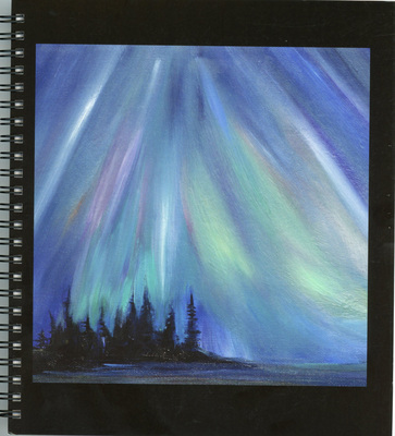Go Wild! Northern Lights Journal