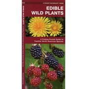 Edible Wild Plant Folding Guide
