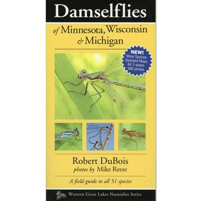 Damselflies Of Minnesota, Wisconsin & Michigan