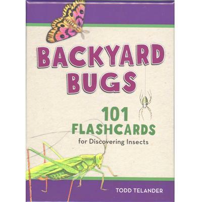 Backyard Bugs Flashcards