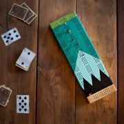Sanborn Canoe Painted Cribbage Board Gooseberry