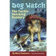 The Turtle-Hatching Mystery