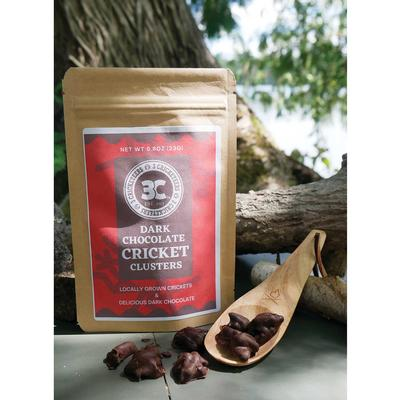 3 cricketeers dark chocolate covered crickets