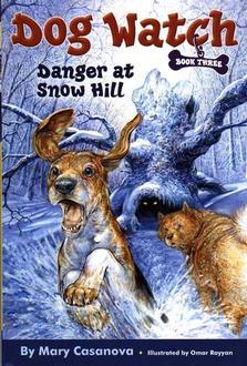 Danger At Snow Hill