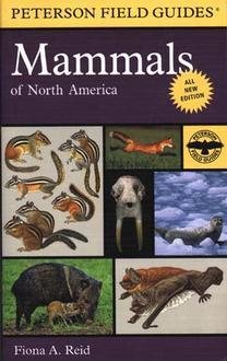 Mammals Of North America Field Guide