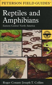 Reptiles And Amphibians Eastern/Central North America